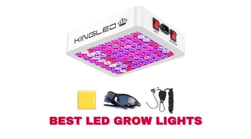 Top 10 Best LED Grow Lights